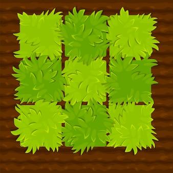 Illustratie van een tuinbed in vierkanten