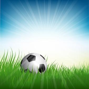 Illustratie van een voetbal bal ligt in het gras