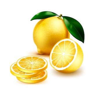 Illustratie van geheel en doorsnede met plakjes sappige citroen met groene bladeren geïsoleerd op een witte achtergrond