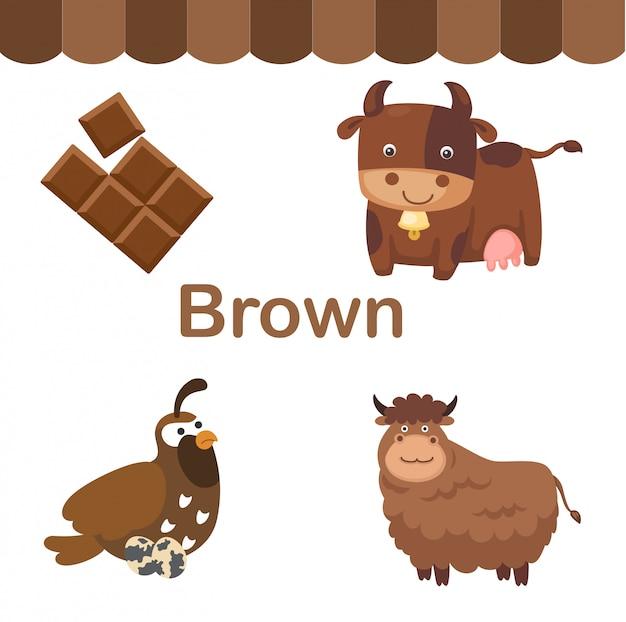 Illustratie van geïsoleerde kleuren bruine groep