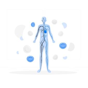 Illustratie van het concept van de bloedsomloop