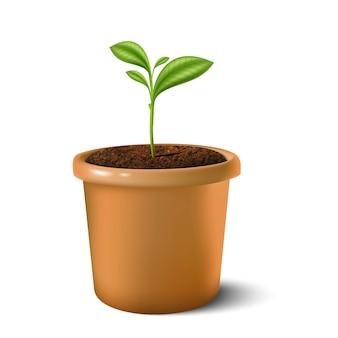 Illustratie van kleine plant in de aarden pot. op wit wordt geïsoleerd