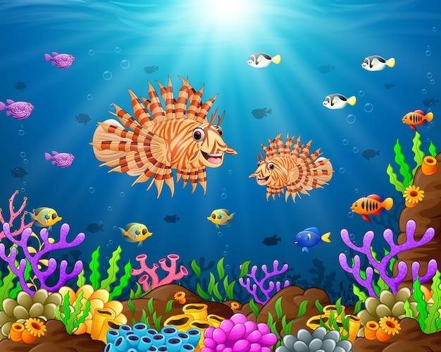 Illustratie van onder de zee