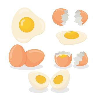 Illustratie van rauw ei, gebroken, gekookt en gebakken ei