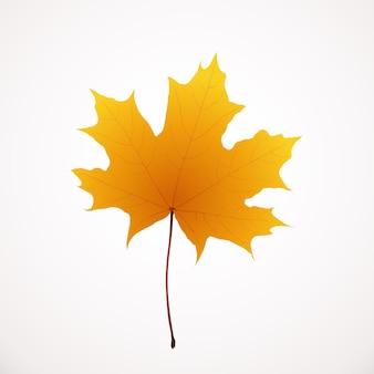 Illustratie van realistische gouden kleur herfst esdoornblad geïsoleerd op een witte achtergrond