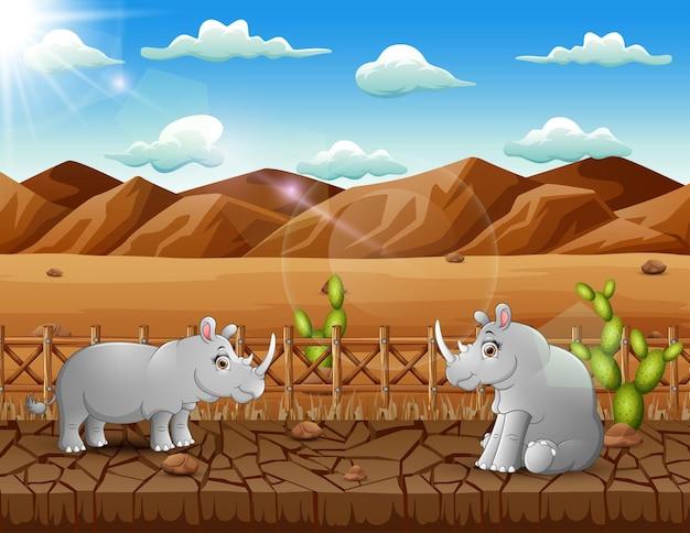 Illustratie van twee neushoorns die op het droge leven