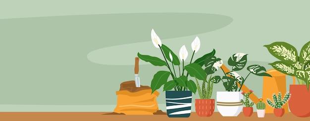 Illustratie van verschillende kamerplanten binnenshuis