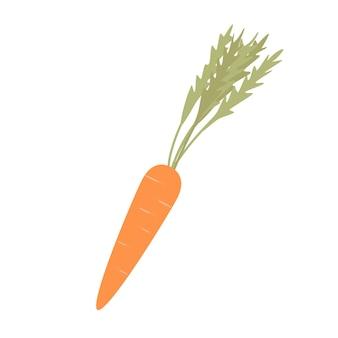 Illustratie van verse oranje wortelen met bladeren. geïsoleerd op een witte achtergrond.
