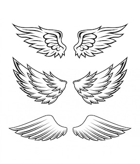 Illustratie van wings collection set