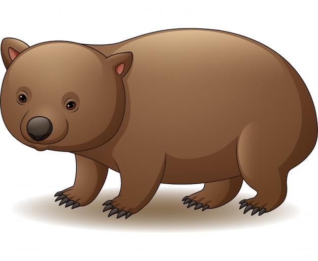 Illustratie van wombat die op witte achtergrond wordt geïsoleerd