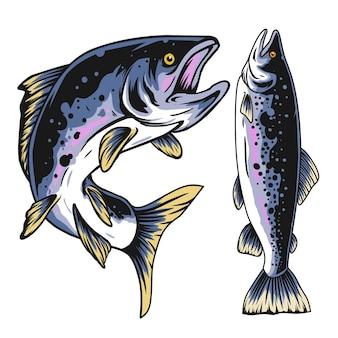 Illustratie van zalmvissen