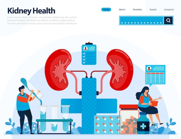 Illustratie voor het controleren van de niergezondheid. ziekten en aandoeningen van de nieren.