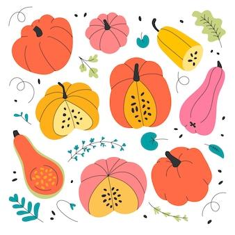 Illustraties van verschillende pompoenen