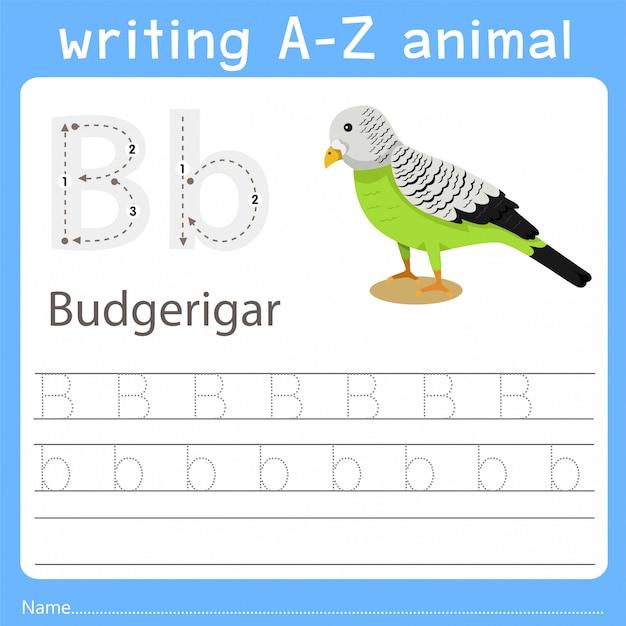 Illustrator die az-dier van grasparkiet schrijft