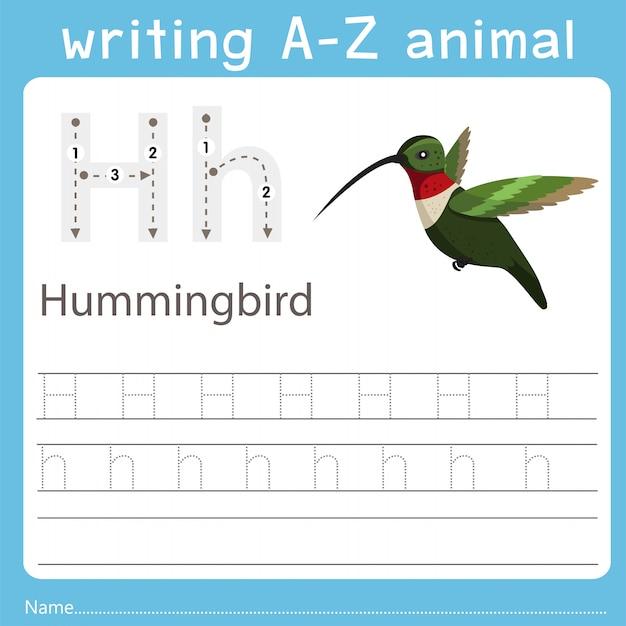 Illustrator die az-dier van kolibrie schrijft
