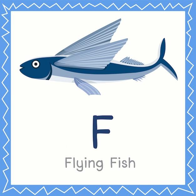 Illustrator van f voor flying fish-dier