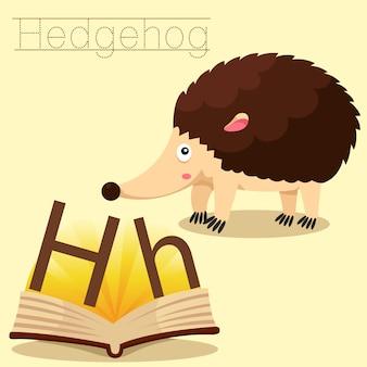 Illustrator van h voor hedgehog-vocabulaire
