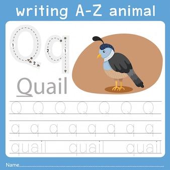 Illustrator van het schrijven van az animal q
