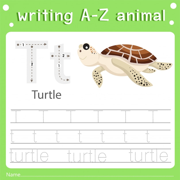 Illustrator van het schrijven van az dierlijke t-schildpad