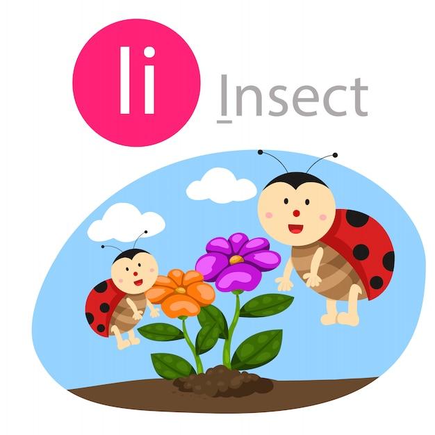 Illustrator van i voor insectendier