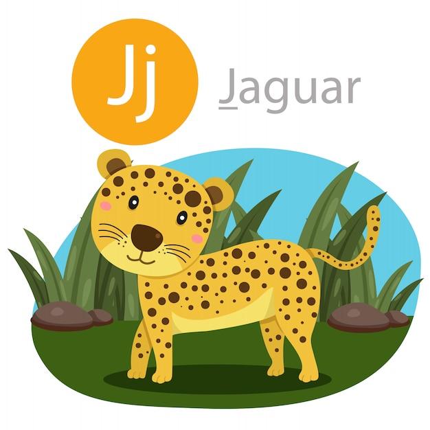Illustrator van j voor jaguar-dier