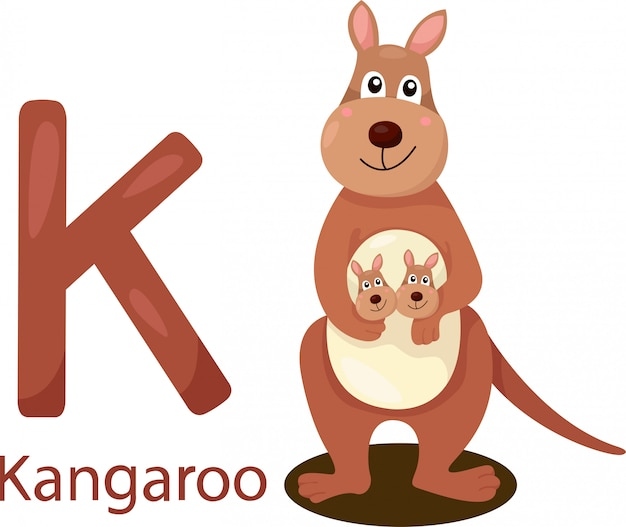 Illustrator van k met kangoeroe