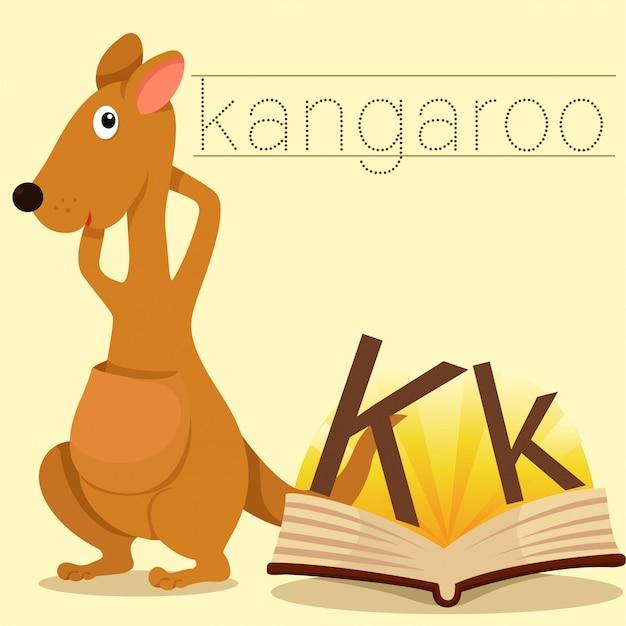 Illustrator van k voor vocabulaire van kangaroo