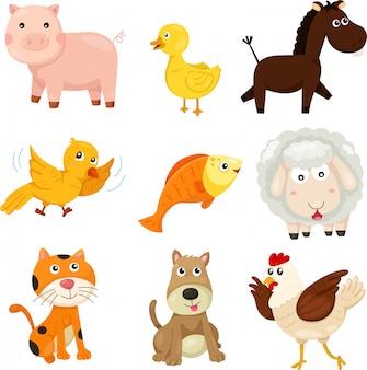 Illustrator van landbouwhuisdieren