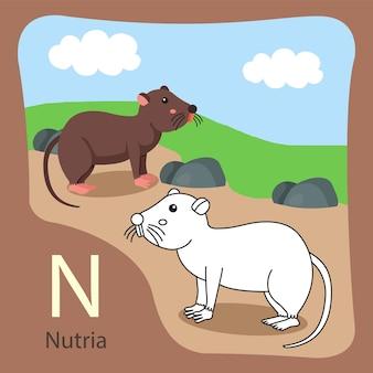 Illustrator van nutria geïsoleerd en kleuren