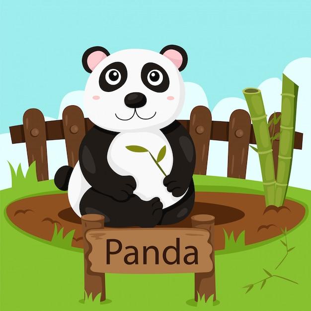 Illustrator van panda in de dierentuin
