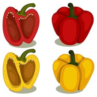 Illustrator van paprika twee