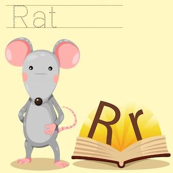 Illustrator van r voor rattenwoordenschat