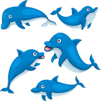 Illustrator van schattige dolfijn