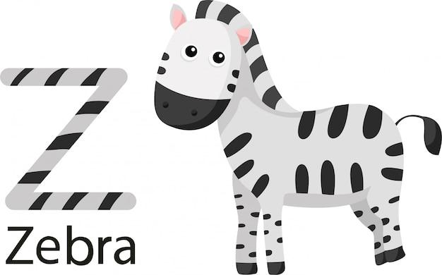 Illustrator van z met zebra