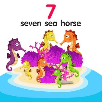 Illustrator van zeven zeepaardjes