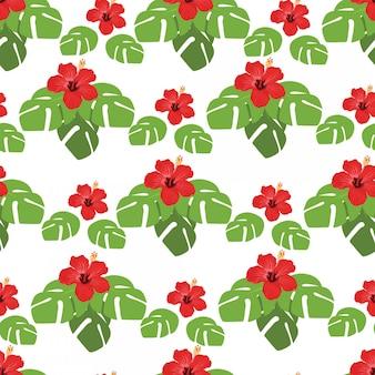 In de zomervakantie, naadloos patroon met monsterabladeren en hibiscusbloemen