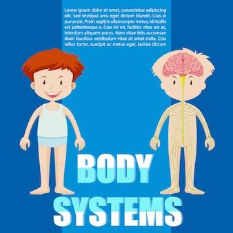 Infographicmalplaatje van jongen en lichaamssysteem