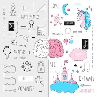 Infographics de linker en rechter hersenhelft van de hersenen