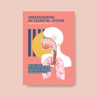 Informatie over de anatomie van het ademhalingssysteem en het begrijpen van een essentieel systeem