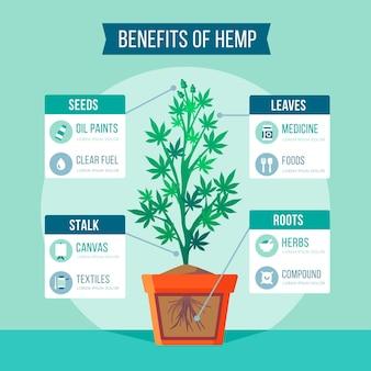 Informatie over het gebruik van hennep infographic