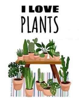 Ingemaakte vetplanten in hygge interieur