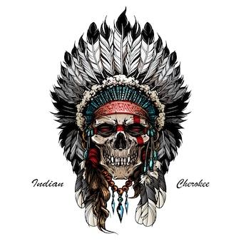 Inheemse amerikaanse schedel
