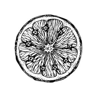 Inkt handgetekende oranje geïsoleerd op witte achtergrond vectorillustratie van zeer citrusvruchten