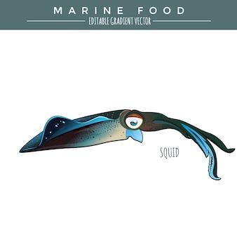 Inktvis. marine food fish
