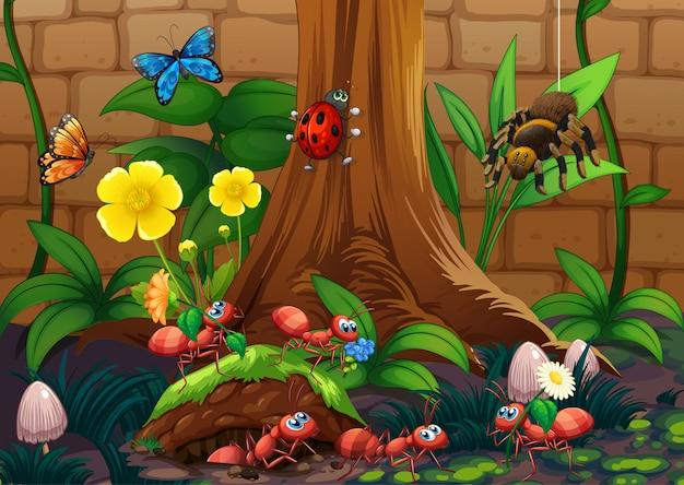 Insect in de natuur