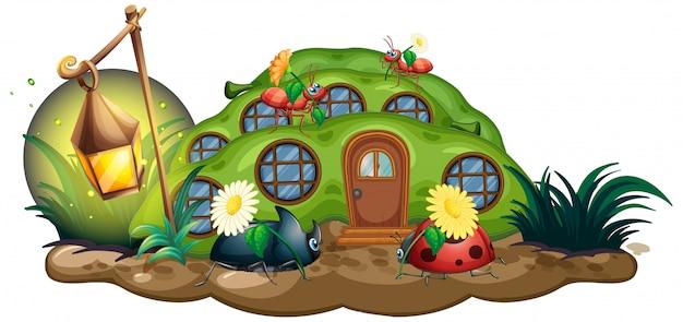 Insect in het sprookjeshuis