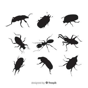 Insect silhouet collectie