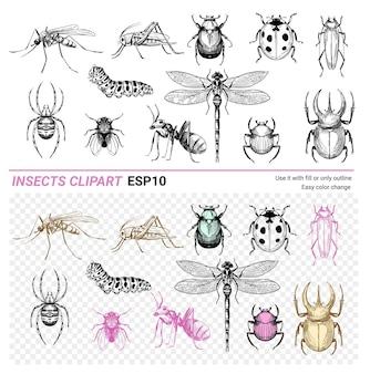 Insecten set hand getrokken schets vectorillustratie kevers libel spider