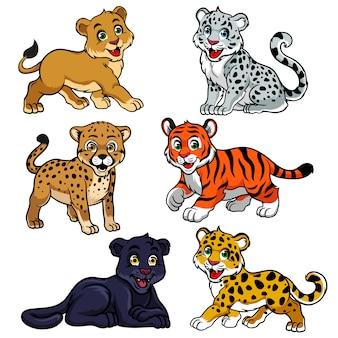 Inzameling van baby undomestic tijgers