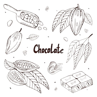 Inzameling van cacaobonen en chocolade op een witte achtergrond. illustratie met gravure.